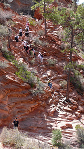 Busy Day on Angels Landing Trail