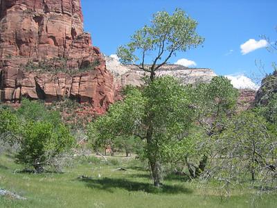 West Rim Trail, Zion NP, Utah, USA