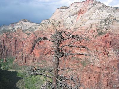 Angels Landing Trail, Zion NP, Utah, USA