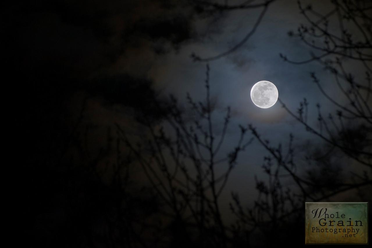 20091231_Moon_3706tc