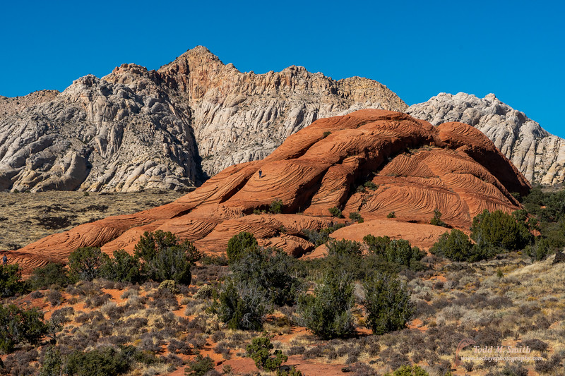 After visiting colleagues in St. George, there was time for a hike in Snow Canyon, a Utah state park near S. George.