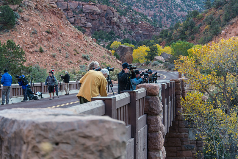 Photographers capturing early light over the Virgin River in Zion National Park, UT - November 2014