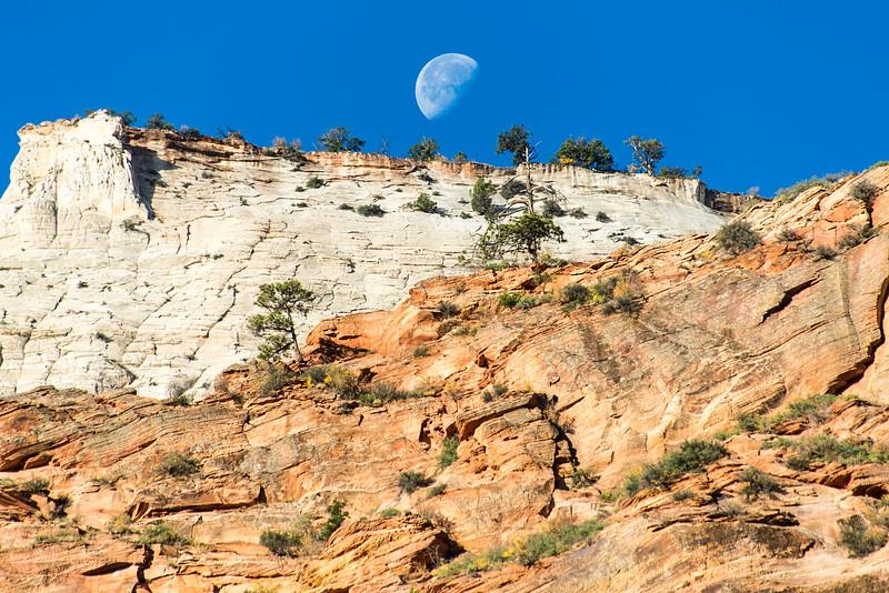Moon setting over Zion National Park, UT - November 2014