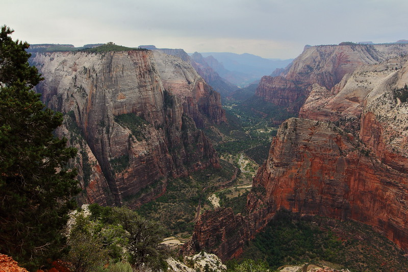 The main canyon from the top of Observation Point.