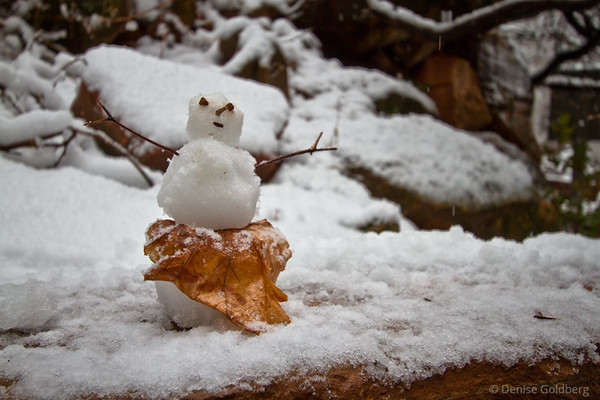 tiny snow woman