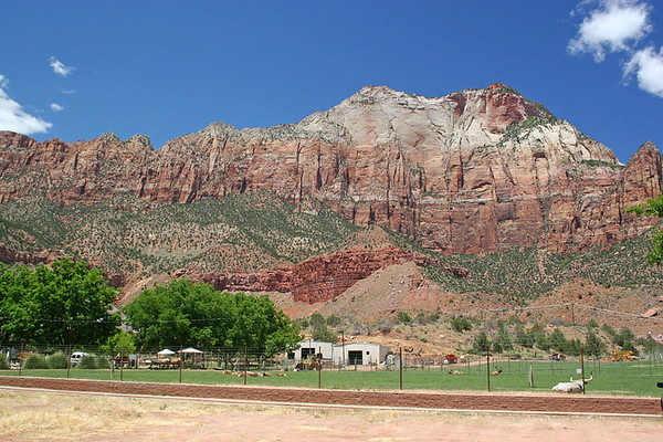 This is Zion. A sleepy little town surrounded by ginormous rocks.
