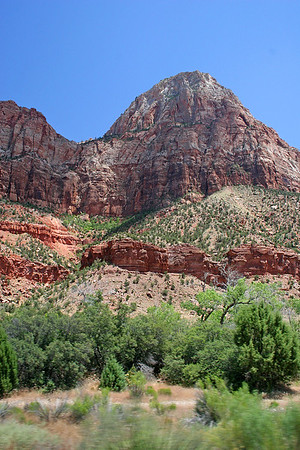 And now we're IN Zion National Park