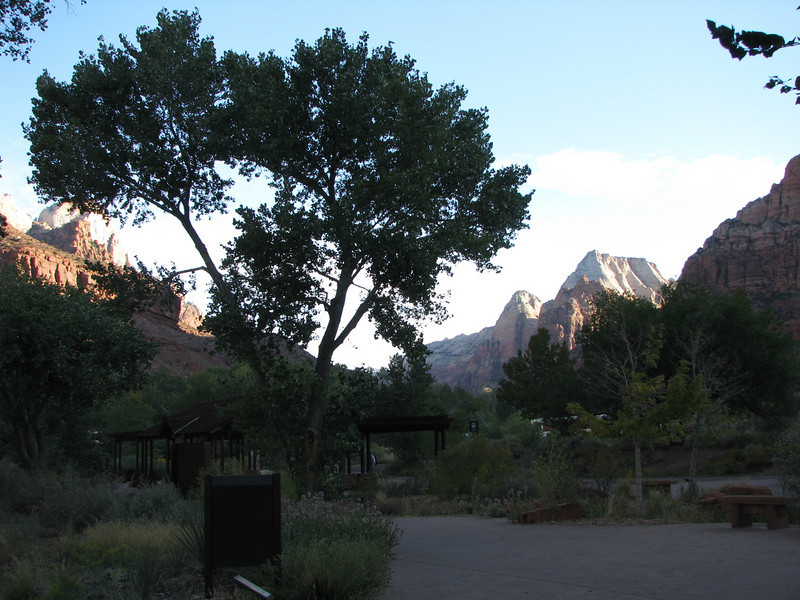 Zion valley still in the shadow of the mountain while the wind stirs tree leaves around.