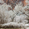 Light Snow in the Valley