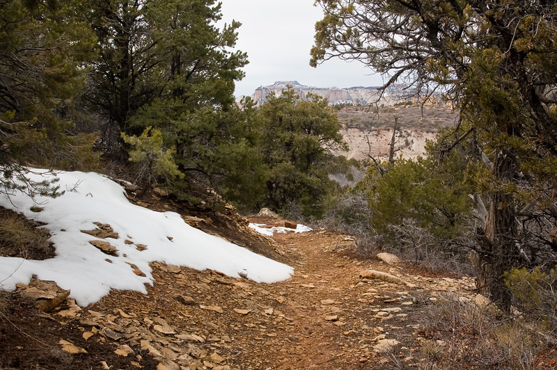 Cable Mountain Trail-0502