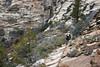 The Rim Trail-0559