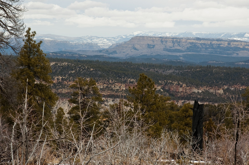 Looking North from the East Rim-0492