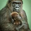 Baby Obi and mom Hope