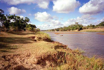 Olifants rivier
