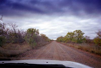 Gravelweg in Krugerpark