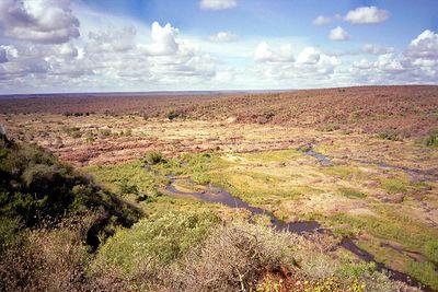 Uitzicht vanuit camp Olifants