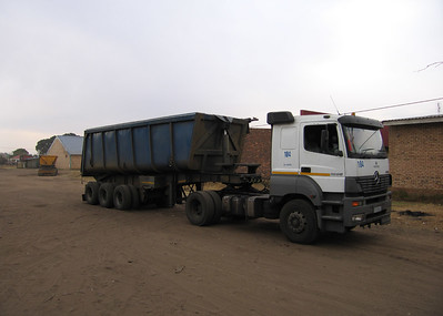 Kolen transport