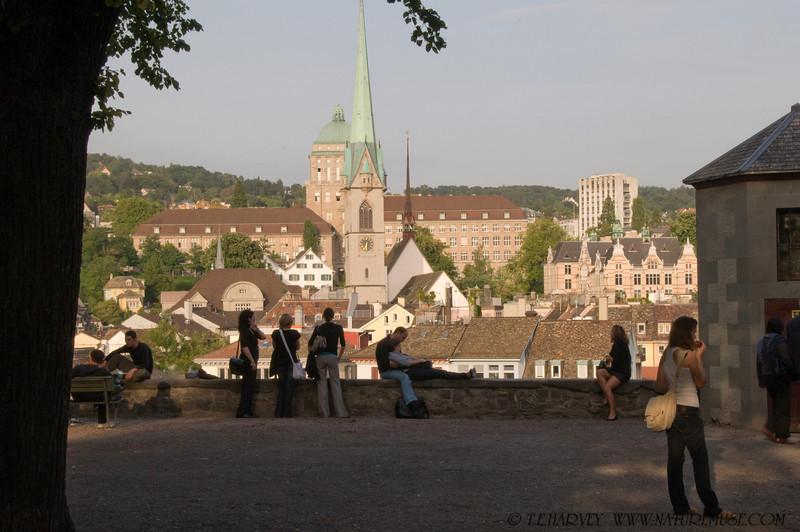 Afternoon in Zurich