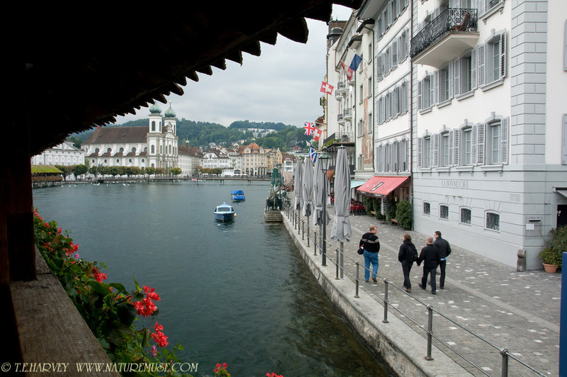 River View in Lucerne
