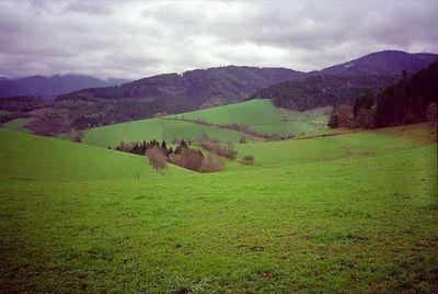 Heuvels