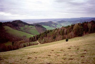 Fohrental