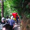 Day 8: Zhang Jiajie Park  - 080