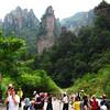 Day 8: Zhang Jiajie Park  - 230