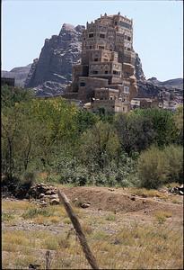 wadi dahr 05