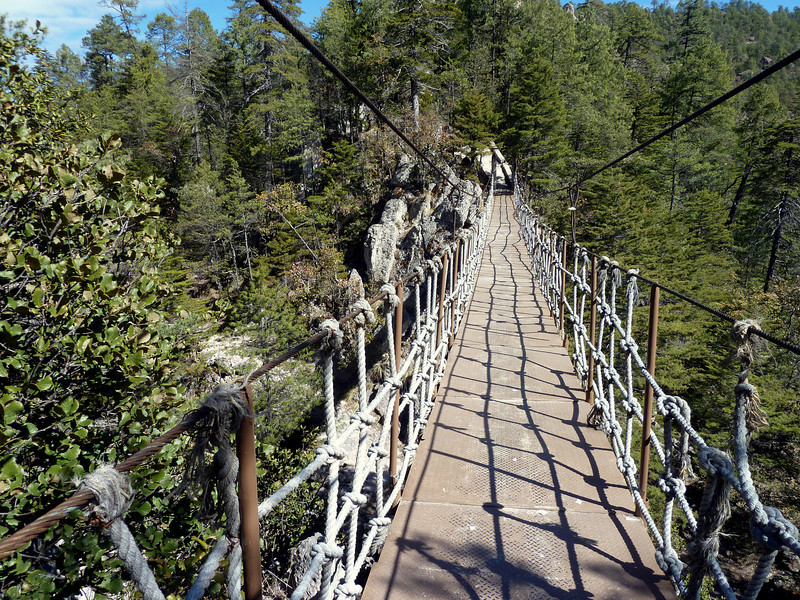The suspension bridge.