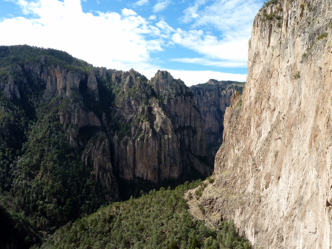 Looking down the canyon.