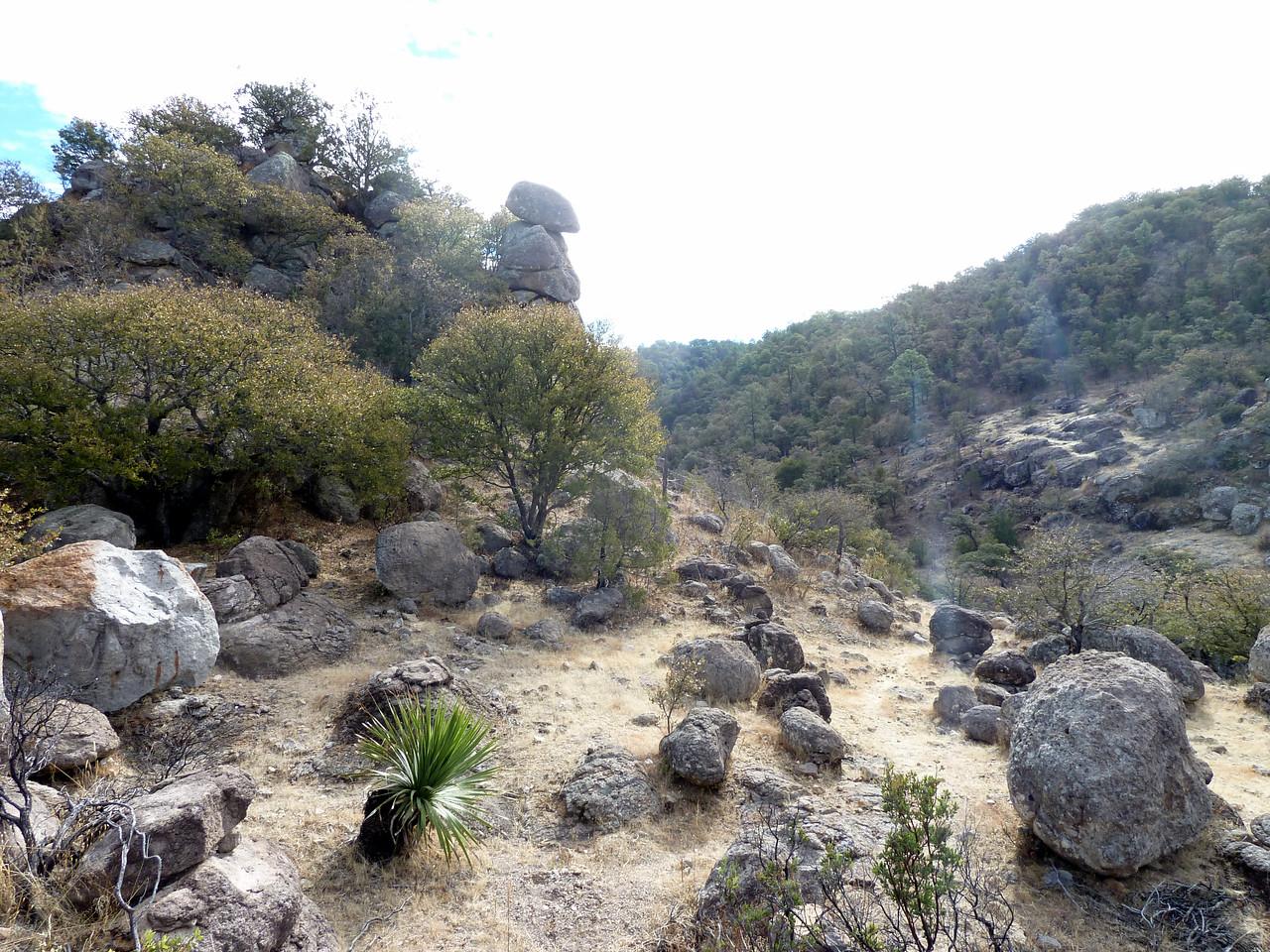 Roadside rocks.