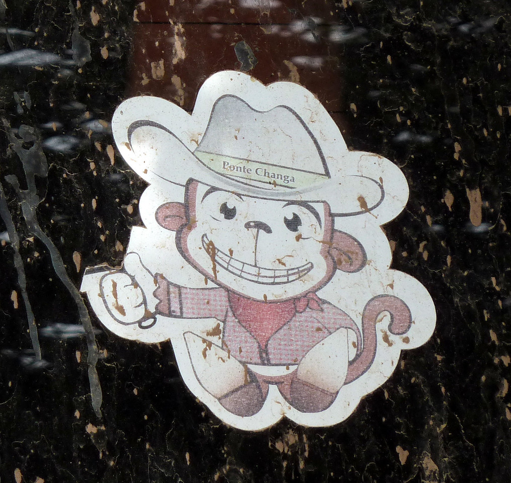 I saw several of these little monkeys in Urique. What does it mean?