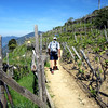 Along the way, the hike through the vineyards proved that the region does grow its own grapes.