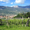 Pati's photo captures the beauty of Rovereto. Vineyards, lush fields, beautiful towns, and the mountains in the background.