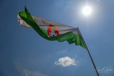 The Slovenian flag