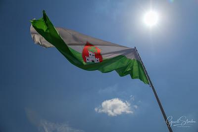 The Slovenian flag