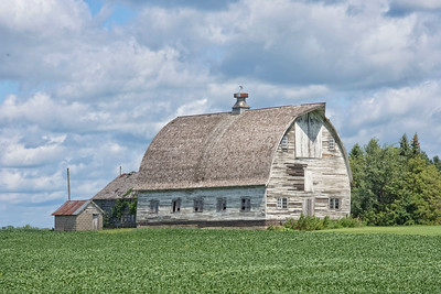 Old Barn - Minnesota