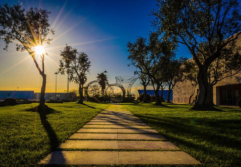 Best of Lisbon Garden Sunshine Art Photography 8 By Messagez com