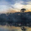 Foggy Lake By Messagez.com