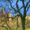 Sintra Palace Photo By Messagez.com