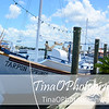Tarpon Springs Harbor 1