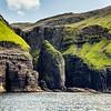 Elephant Rock, Bird Clifss