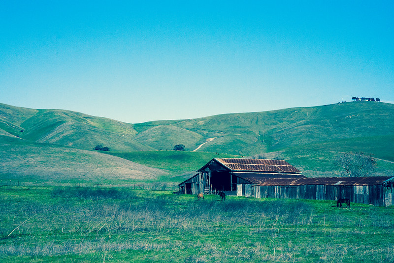 Morgan Territory | Livermore, California