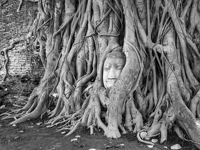 Wat Mahatthat, Ayutthaya, Thailand