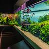 Oceanarium Aquarium Photo By Messagez com