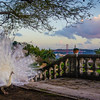 The Original White Peacock Bride Art Photography 2 By Messagez com