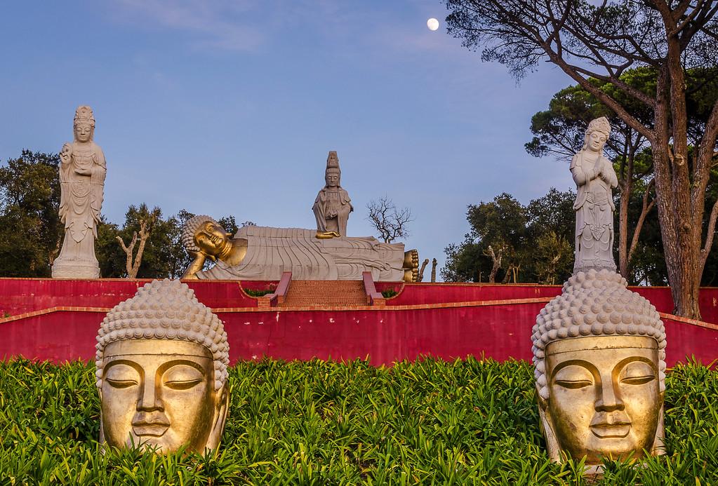 Golden Light Meditation Photography By Messagez com