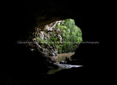 017-forest_cave-belize-05nov06-1447