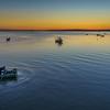 Portugal Alcochete  Photography 4 By Messagez com