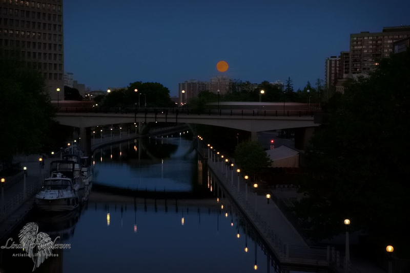 Strawberry Moon in Ottawa